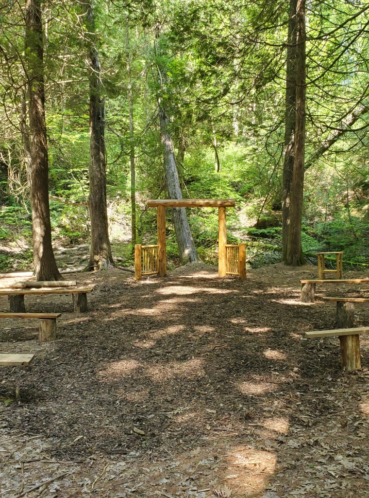 photographer-baker-wedding-covid-mini-wedding-backyard-ceremony-officiant-planner-coodinator-micro-bowmanville-oshawa-cobourg-forest-river